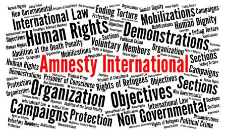 NGOs som Amnesty International